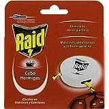 nexa hormigas cebo elimina totalmente las hormigas negras ...