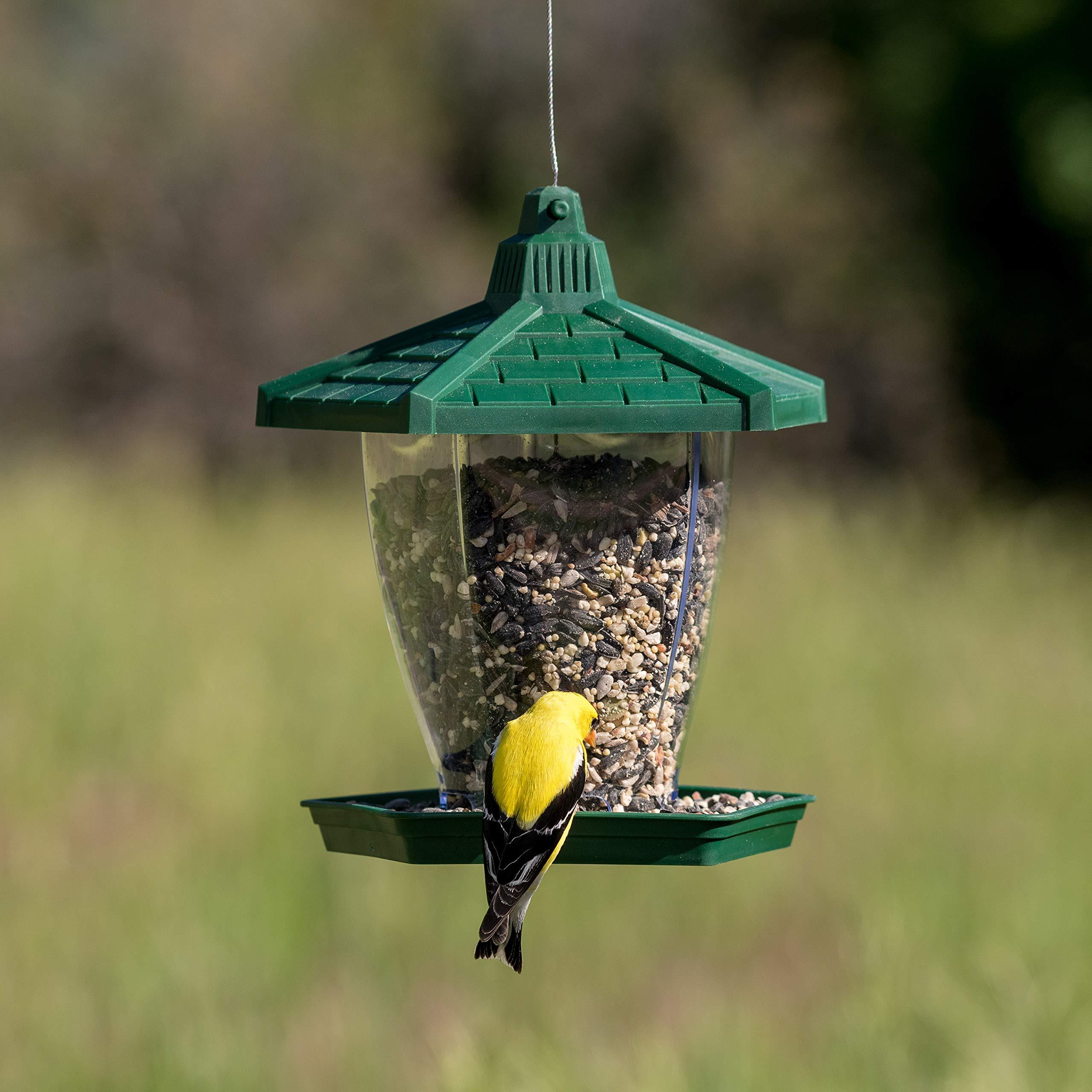 HF950 Perky-Pet Mangiatoia Chalet per Uccelli Selvatici da 450 g Dispenser per Mangime