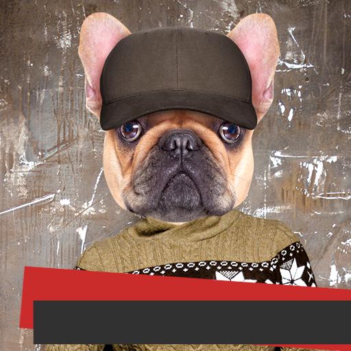 Hund Gesicht Foto Montage - Mops-fotos