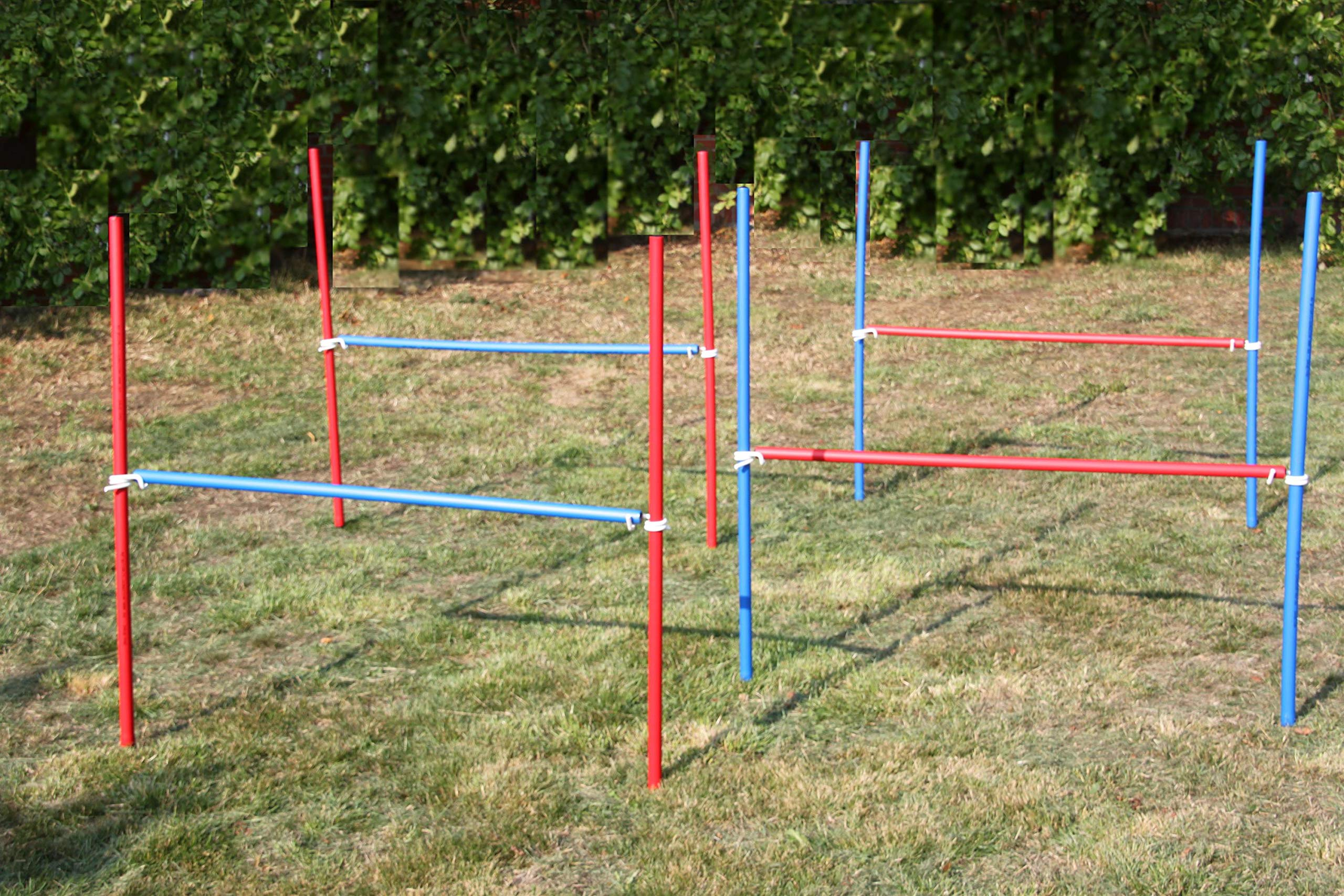4 x Agility Exercise Horses Set in Blue/Red Original Wuzmann