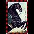 Black Beauty: Roman. Neue deutsche Rechtschreibung (Neuübersetzung) (Anaconda Kinderbuchklassiker)