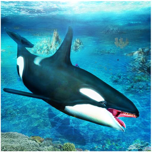 Orca Ataque Simulador