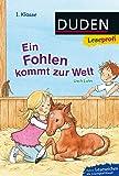 Leseprofi – Ein Fohlen kommt zur Welt, 1. Klasse (DUDEN Leseprofi 1. Klasse)