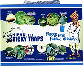 Chipku Insect Killer Blue stickyTrap Non Toxic and Chemical Free Fly Trap/Insect Catcher/Sticky Pads for Insects Aphid, Thrips,leafminor,gants,Jassids - (Pack of 10 Pieces)