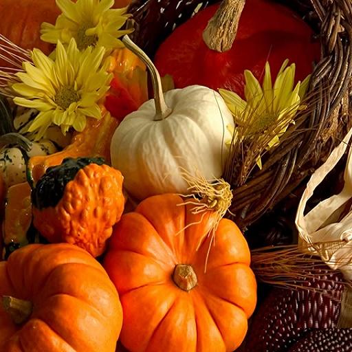 Thanksgiving Tumbler Design Tumbler
