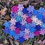 Cottage Garden Blanket Crochet Kit – all-inclusive gift for crochet lovers to make a summer garden throw