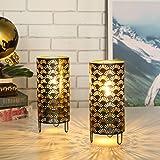 JHY DESIGN Lot de 2 Lampe de Table en Métal Décorative Alimentée par Piles 23.5cm Lampe de Chevet sans fil Éclairage de Nuit