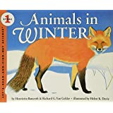 Animals in Winter: 1 (Let's-Read-and-Find-Out Science 1, 1)