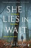 She Lies in Wait: The gripping Sunday Times bestselling Richard & Judy thriller pick (Jonah Sheens 1)