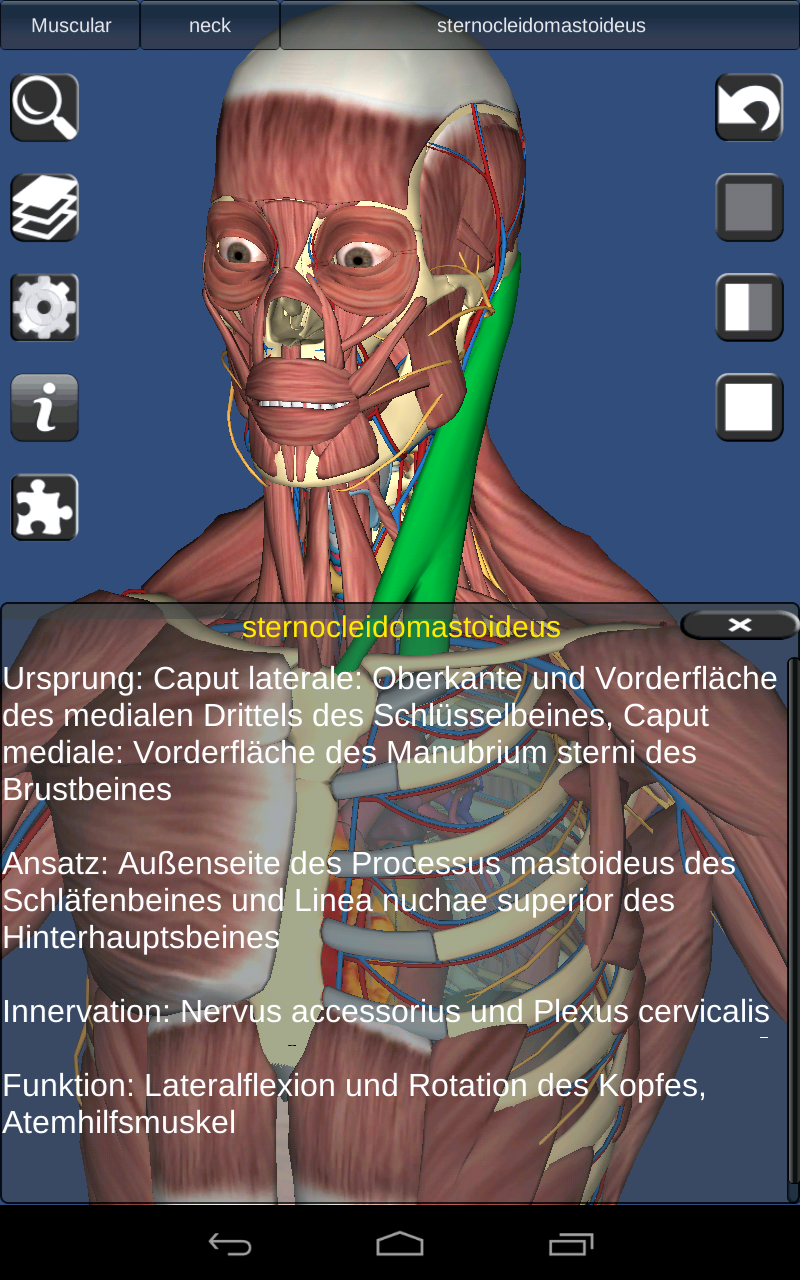 3D Human anatomy: Amazon.de: Apps für Android