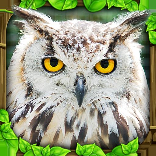 Owl Simulator -
