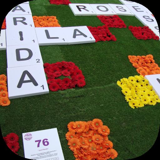 120-photo-crosswords