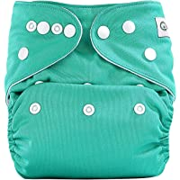 Bumberry Pocket Diaper and 1 Microfiber Insert (Blue and Green)