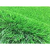 Artificial Grass 40 mm (size : 4 x 2 M) ONLY 2 L M - 8 SM2