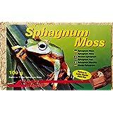 Lucky Reptile SM-100 Spaghnum Moss Brick, 100 g