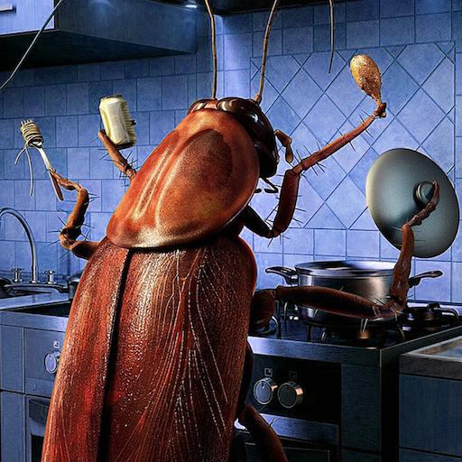 cucarachas-en-la-cocina