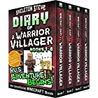 Diary of a Minecraft Warrior Villager - Box Set 1 - Ru's Adventure Begins (Books 1-4): Unofficial Minecraft Books for Kids, T