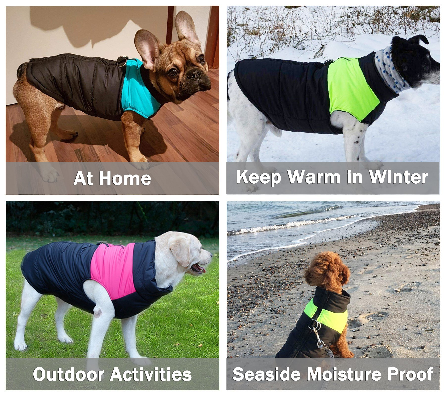 TFENG Waterproof Dog Coats Padded Puffer Jackets with D-Rings for Leash 4 Colors XS-5XL 4