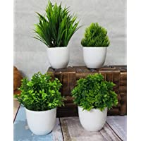 Litleo Mini All Green Different for Home Office Or Decoration Bonsai Wild Artificial Plant with Pot (Set of 4 , 15 cm…