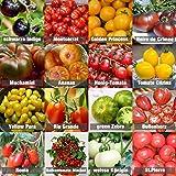 Set de Semillas de Tomate 16 x 10 semillas Tomate Mezcla 100% natural de semillas recogidas a mano de Portugal, variedades ra