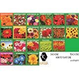 Krisah (4190+) 20 Varieties of Flower Seeds with Instruction Booklet(20)