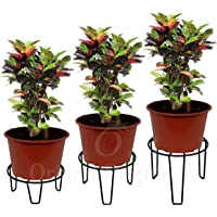 ORCHID ENGINEERS Iron Plant Stand/Pot Stand (Black, Pack of 3)