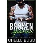 Broken Sparrow (Open Road Series Book 1) (English Edition)