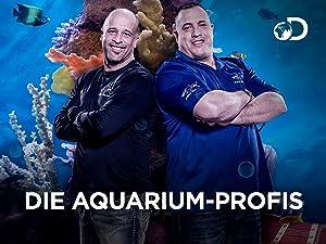 Die Aquarium Profis