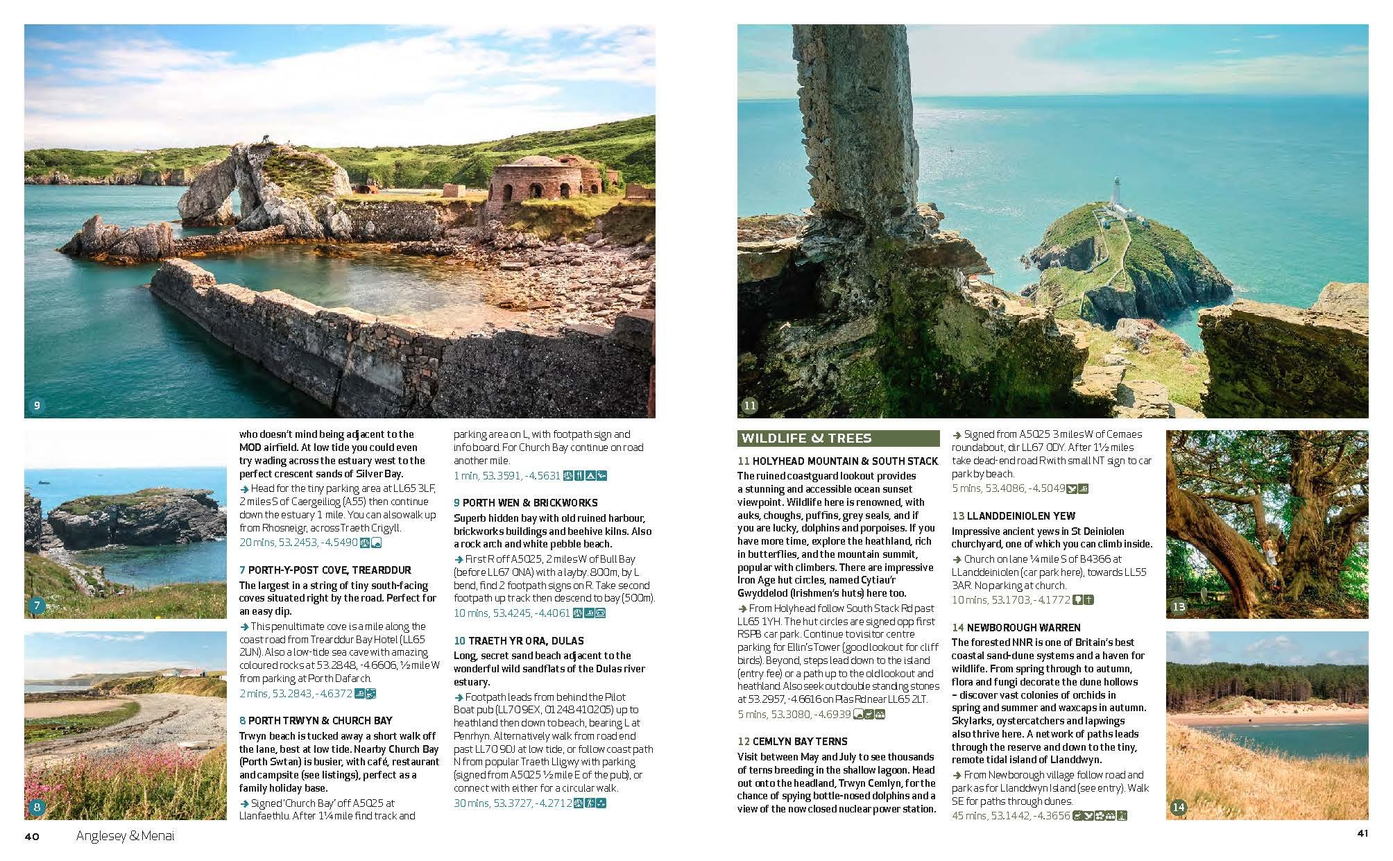 Wild Guide Wales and the Marches (Wild Guides) 14