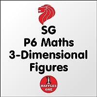 SG P6 Maths 3-Dimensional Fig