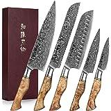HEZHEN Couteaux de Cuisine 5 Pièces, Pain Santoku en Acier Damas traité thermiquement sous Vide et Acier Japonais à Haute ten