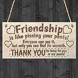 """Red Ocean - Targa dell'amicizia motivo """"Heart & Thank You"""", scritta in stile shabby chic, idea regalo [in lingua inglese]"""