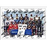 Stunning Quality F1 Drivers 2019/2020 Signed/Autographed Photo Print Lewis Hamilton, Sebastian Vettel, Max Verstappen…