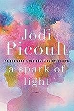 A Spark of Light: A Novel (English Edition)