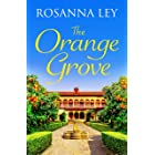 The Orange Grove: a mouth-watering holiday romance set in sunny Seville