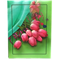 Natraj Studio 0.6 mm Thick Clear PVC Film Photo Album with 200 Pocket (5x7 Inch)