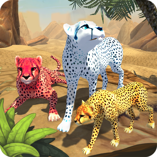 Cheetah Family Sim Geparden Natur