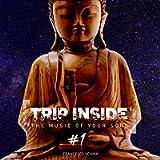 Trip Inside #1