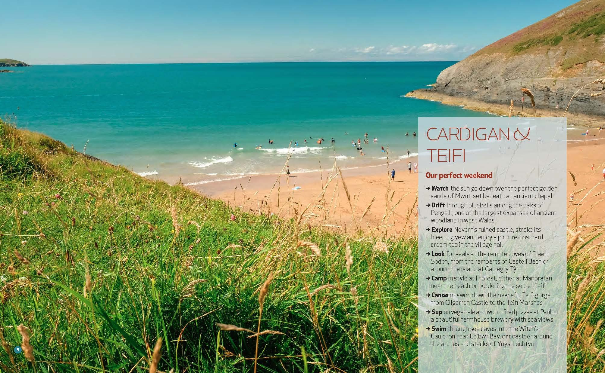 Wild Guide Wales and the Marches (Wild Guides) 18