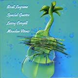 Special Guests - Larry Coryell and Miroslav Vitous
