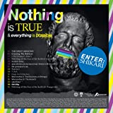Nothing is true & everything is possible [Vinilo]