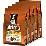 Ultima Croquettes pour Chien Medium-Maxi Adulte Poulet, Riz, Légumes et Fruits - 5 x 2 kg - Total: 10 kg