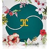 ملصقات جيل بالشاي الاخضر للعيون من جاي جون، عبوة من 60 ملصق