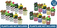 Trust Basket Dotted Grow Bags (Multicolour, Pack of 10) and Trust Basket Stripe Grow Bags (Multicolour, Pack of 10)