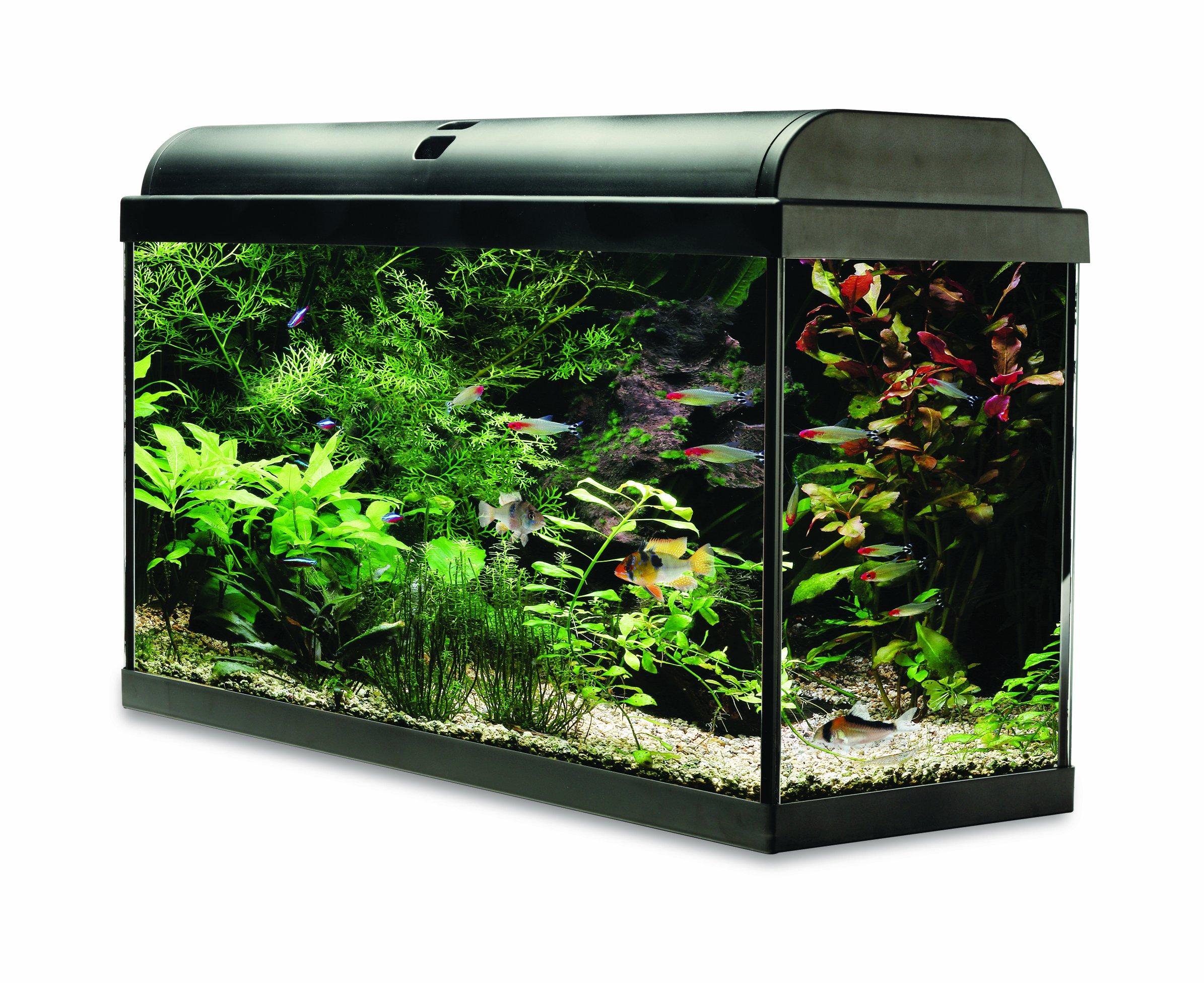 Interpet Aquaverse Glass Aquarium Fish Tank Premium Kit- 65 L
