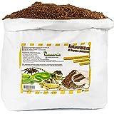 Humusziegel - 20 L Sustrato para Terrarios - Tierra de Fibra de Coco Suelta y Seca para Macetas - Sustrato Natural y sin Turb