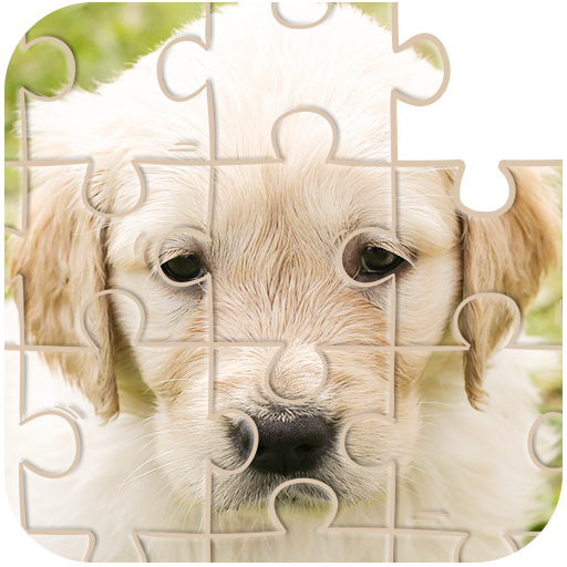 Jigsaw Puzzle for kids 2019, jigsaw game for girl , kindergarten and preschool boys. epic pictures of puppy dog, cat, city, animals, car, house . Children ages 2, 3, 4, 5 Year Old