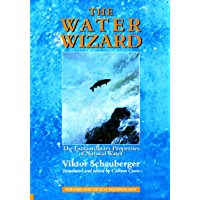 The Water Wizard – The Extraordinary Properties of Natural Water (Ecotechnology Book 1) (English Edition)