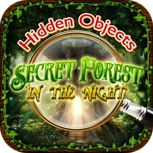 Hidden Objects Secret Forest in the Night