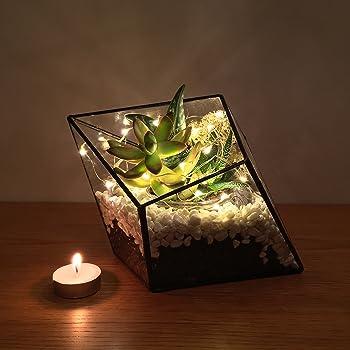 Diamond Terrarium With Live Succulent Plants And Led Fairy Lights